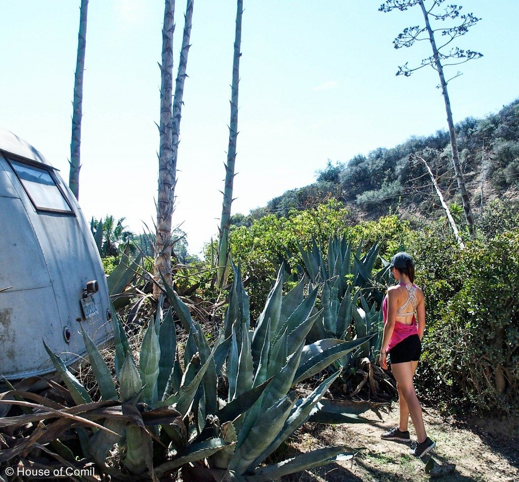 Runyon Canyon Must Do Hike in Los Angeles - Wearing a Lululemon Top