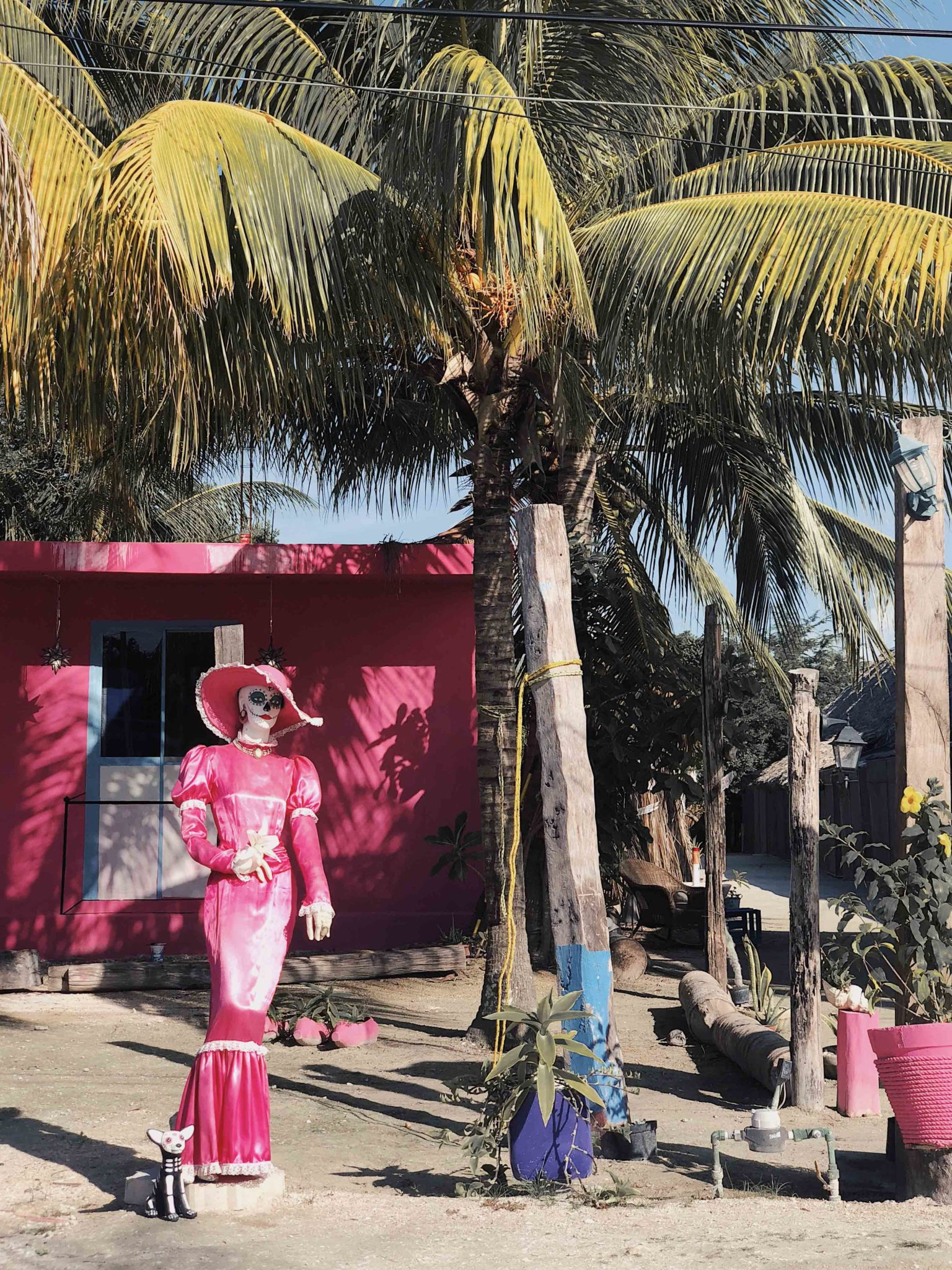 Travel ideas in Yucatan - Near Cancun discover the paradise of Holbox Island