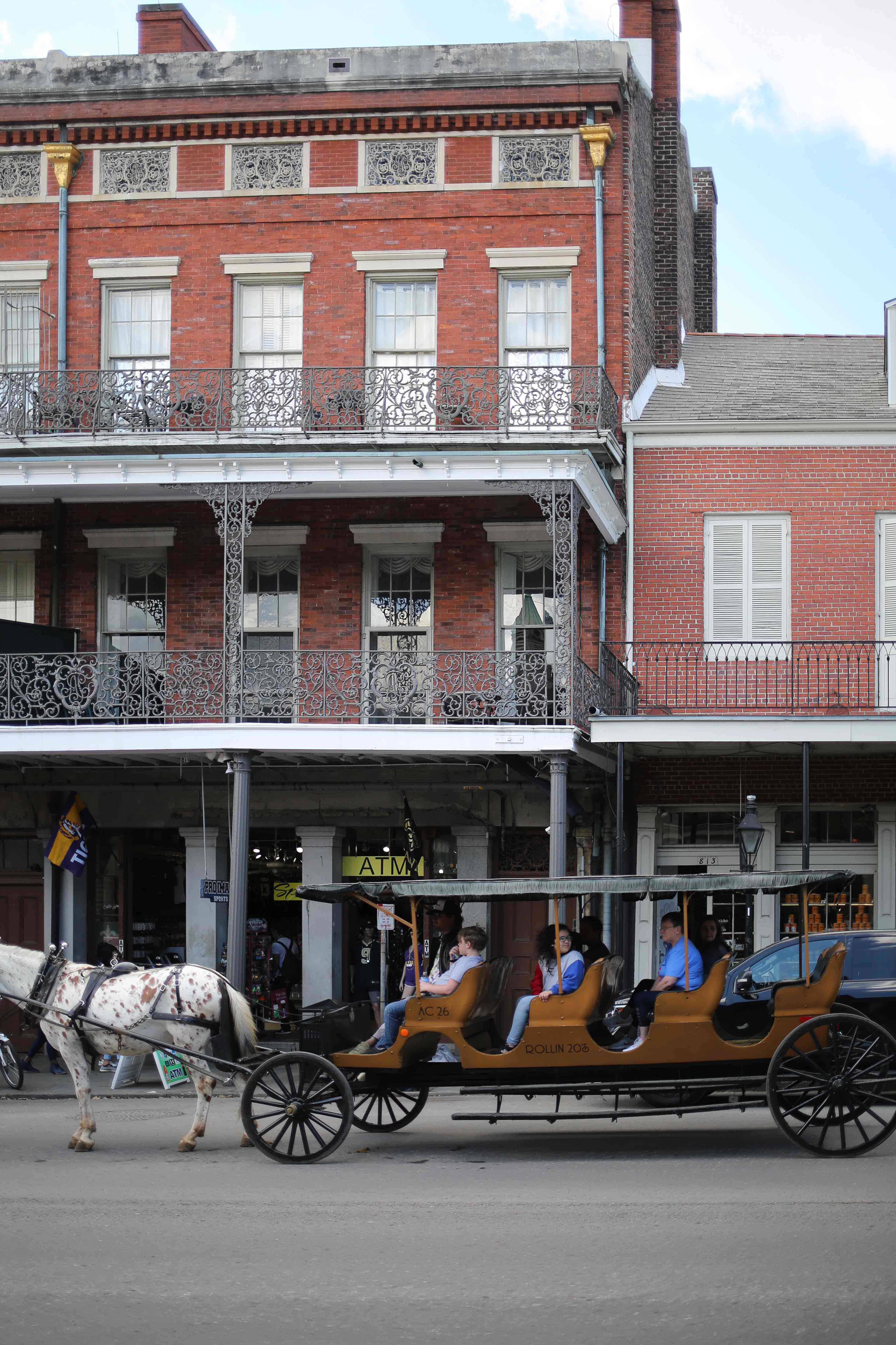 Horse French Quarter New Orleans Travel Guide - NOLA City guide - by fashion blogger Julia Comil